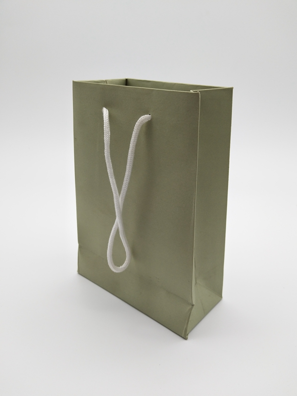 ZD-013 Paper Jewelry Gift Storage Packing bag
