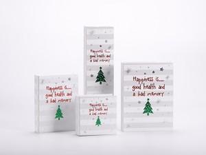ZTB-109 colorful printed cardboard jewelry gift box (book shaped)