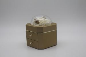 ZTB-127 (gold)  patented new jewelry storage bo...